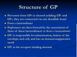 structure of gp