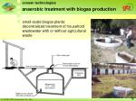 anaerobic treatment with biogas production