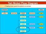 tati nickel flow diagram
