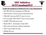 msc initiatives slt consultant flt