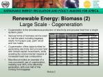 renewable energy biomass 2