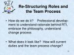 re structuring roles and the team process18