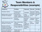 team members responsibilities example