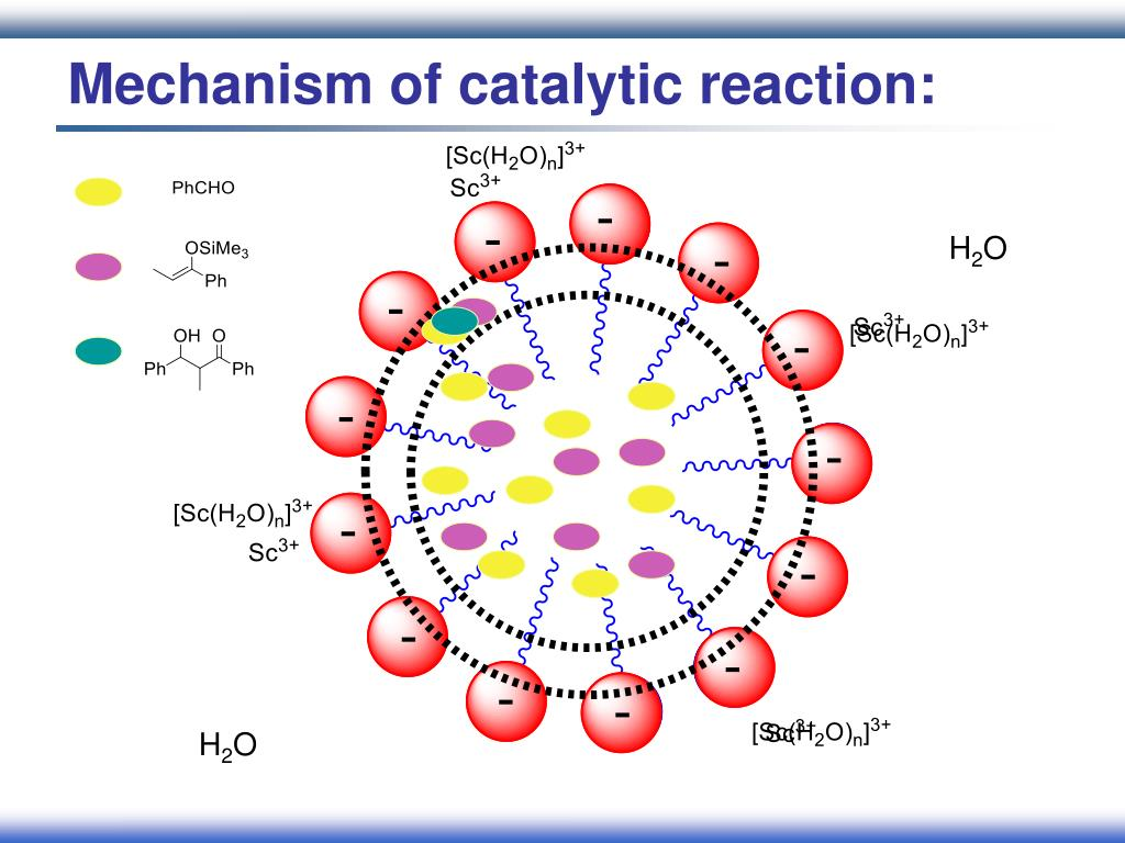 Mechanism of catalytic reaction: