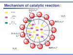 mechanism of catalytic reaction