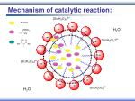 mechanism of catalytic reaction29