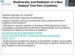 biodiversity and radiation of a new zealand tree fern c yathea