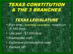 texas constitution the 3 branches 2