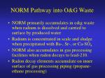 norm pathway into o g waste