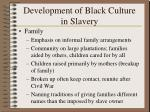 development of black culture in slavery35
