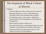 development of black culture in slavery38