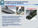 modular unmanned surface craft littoral muscl
