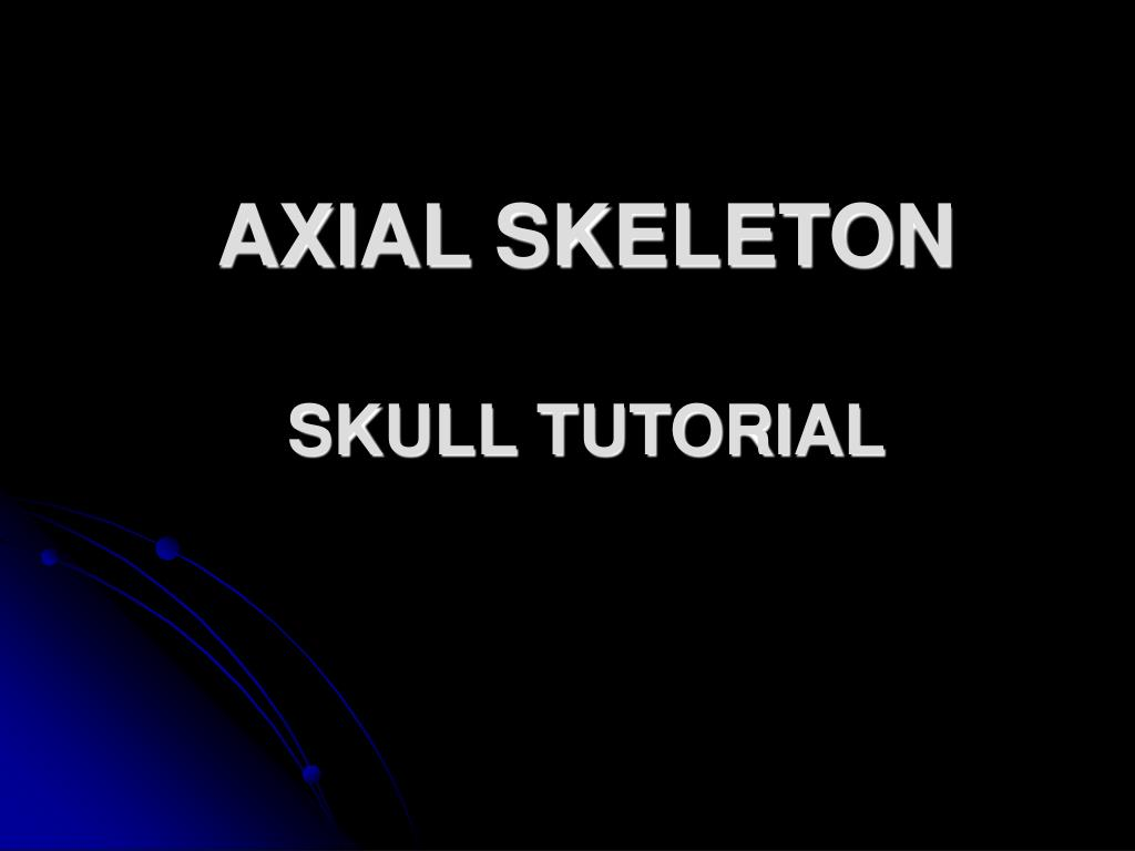 axial skeleton skull tutorial l.