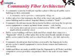 community fiber architecture