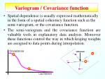 variogram covariance function