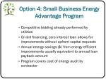 option 4 small business energy advantage program