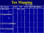 tax mapping