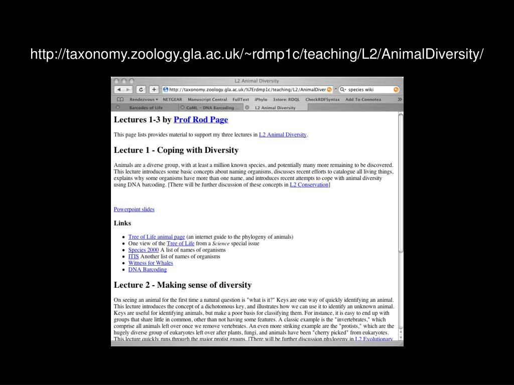 http://taxonomy.zoology.gla.ac.uk/~rdmp1c/teaching/L2/AnimalDiversity/