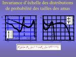 invariance d chelle des distributions de probabilit des tailles des amas