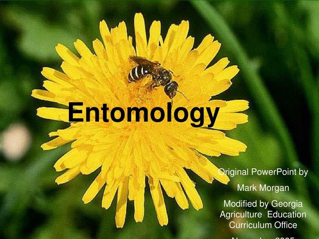 entomology l.