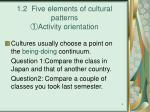 1 2 five elements of cultural patterns activity orientation