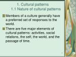 1 cultural patterns 1 1 nature of cultural patterns