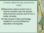 a factor determining masculinity index