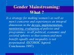 gender mainstreaming what