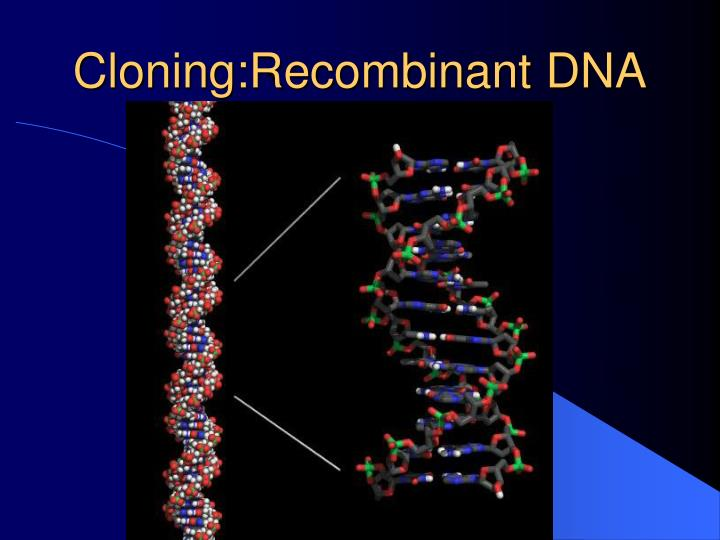 cloning recombinant dna n.