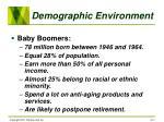 demographic environment17