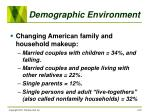 demographic environment20