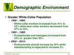 demographic environment23