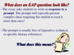 what does an eap question look like