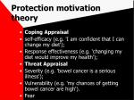 protection motivation theory40