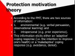 protection motivation theory41
