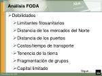 an lisis foda34