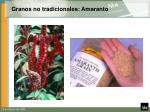 granos no tradicionales amaranto