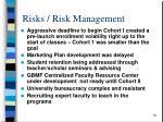 risks risk management