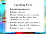 budgeting steps