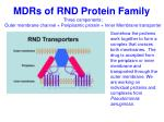 mdrs of rnd protein family