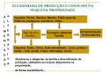 fluxograma de produ o e consumo na pequena propriedade