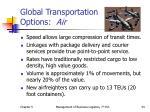 global transportation options air