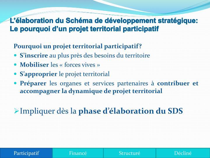 L'élaboration du Schéma de développement stratégique: Le pourquoi d'un projet territorial pa...