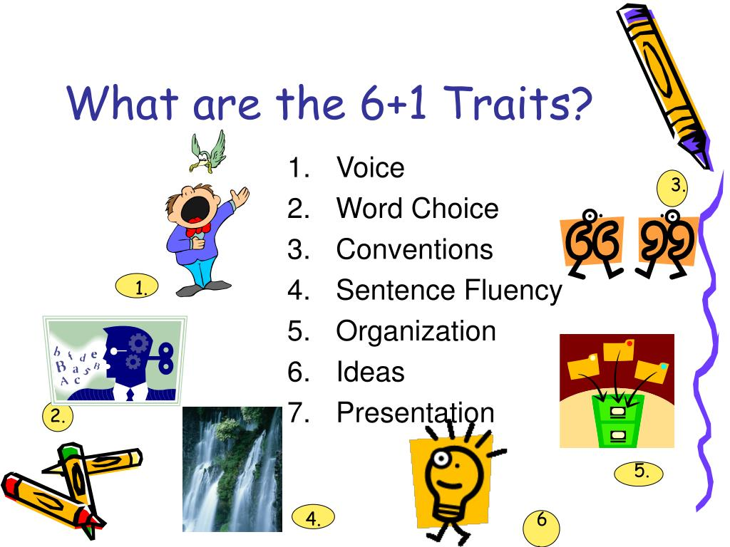 What are the 6+1 Traits?