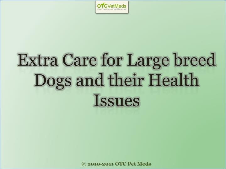 Extra care for large breed dogs and their health i ssues