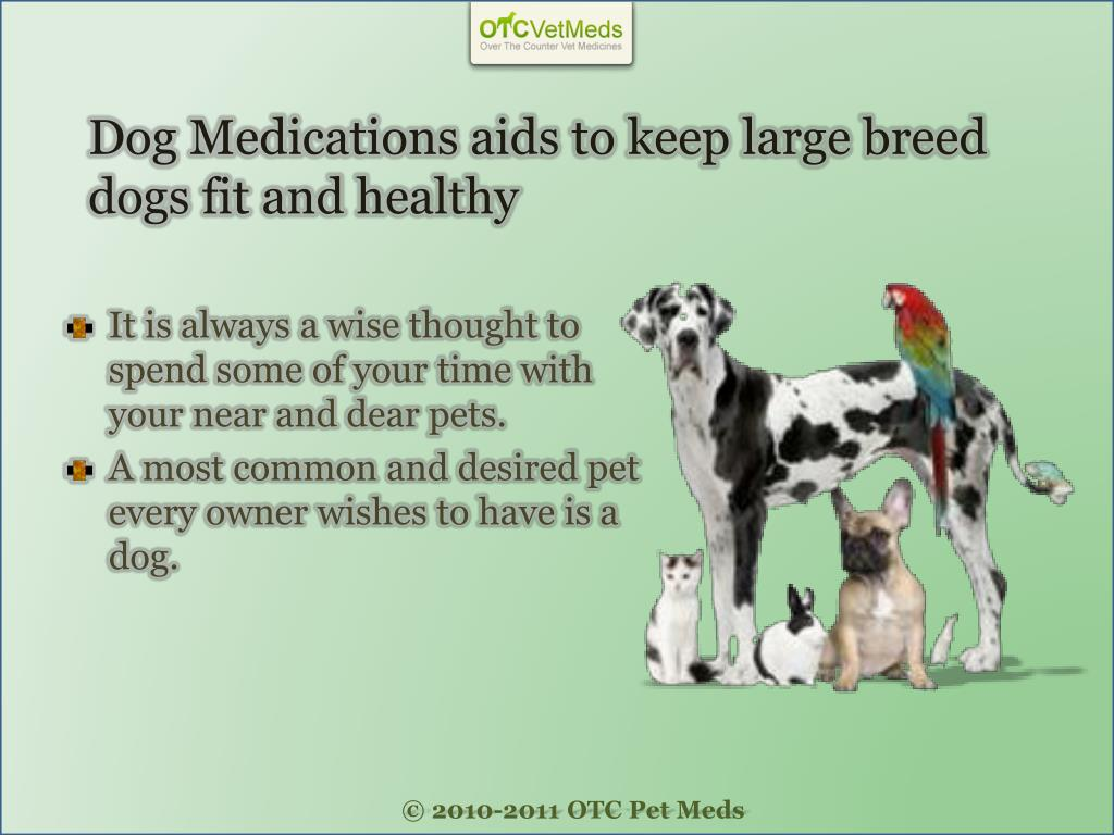 Dog Medications aids to keep large breed dogs fit and healthy