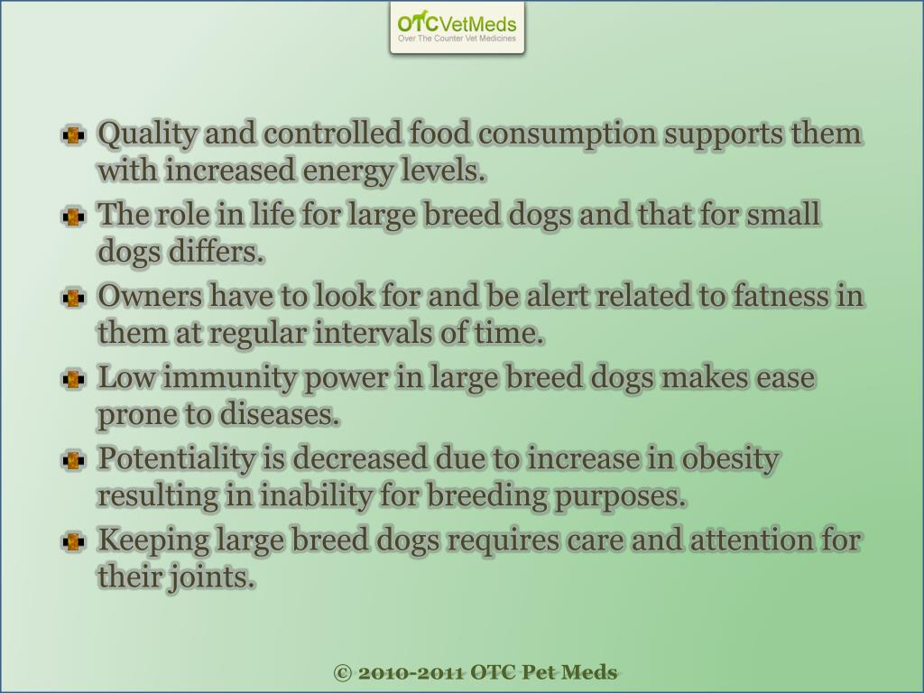 Quality and controlled food consumption supports them with increased energy levels.