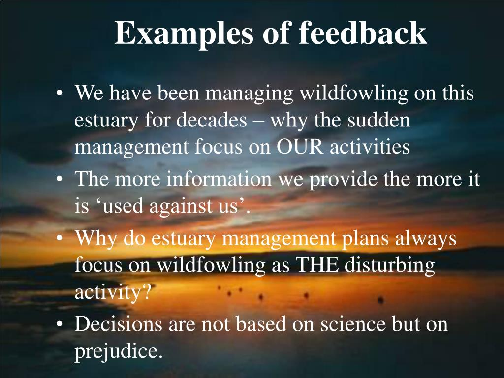Examples of feedback