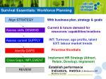 survival essentials workforce planning