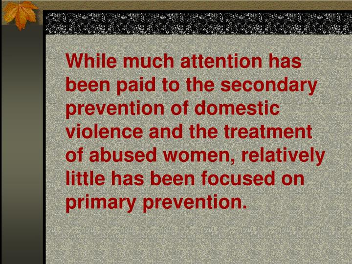 While much attention has been paid to the secondary prevention of domestic violence and the treatmen...